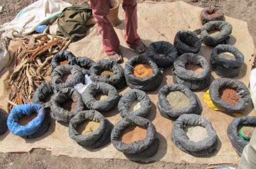 Article : 5 challenges pour le développement de la médecine «traditionnelle» en Afrique