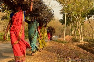 Autonomisation économique de la femme