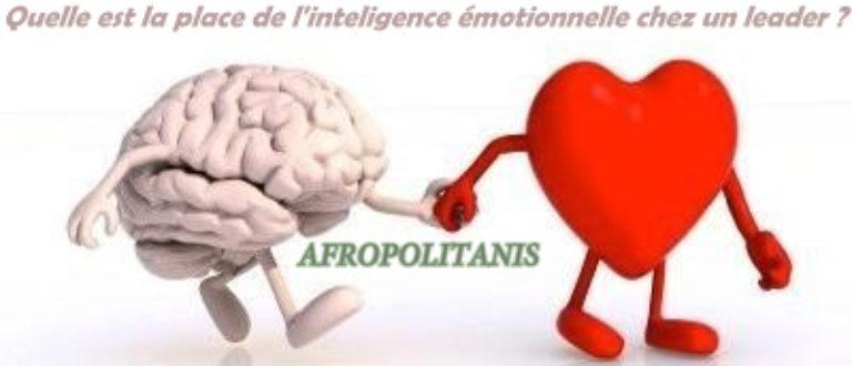 Article : Quelle est la place de l'intelligence émotionnelle pour un leader ?