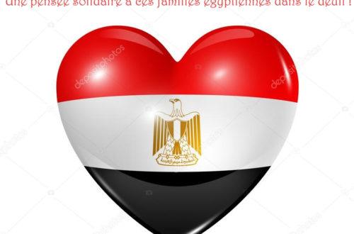 Article : «Ana Masry», une pensée solidaire à ces victimes égyptiennes du 24 Novembre 2017 !