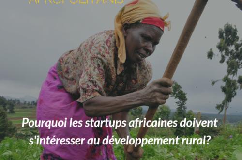 Article : Pourquoi les startups africaines doivent s'intéresser au développement rural?