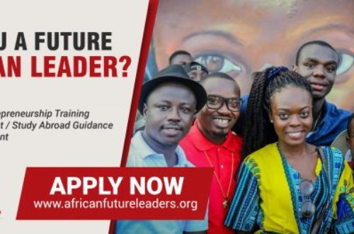 Article : Apply NOW for the African Future Leaders Fellowship (Cohort 2)